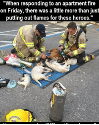 Memes, 🤖, and Flame: When responding to an apartment fire  on Friday, there was a little more than just  putting out flames for these heroes.""