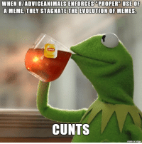 """What is this obsession of sticking to a silly format?: WHEN RIADVICEANIMALSENFORCES """"PROPER USE OF  A MEME THEY STAGNATE THE EVOLUTION OF MEMES.  CUNTS  made on imgur What is this obsession of sticking to a silly format?"""