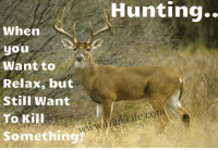 When  S  you  Want to  Relax, but  Still Want  To Kill  Something  Hunting  Life.com  ek Who Loves To Relax LIKE US?  Comment, SHARE, & TAG your friends if they do too.  ~Hick Life - Dont Talk About It Be About It. www.HickLife.com