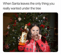 True, Santa, and Tree: When Santa leaves the only thing you  really wanted under the tree  1  SPr  CM May all of your holiday dreams come true! Or actually just mine. ad likeacaptain