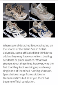 Memes, Columbia, and Plane Crash: When several detached feet washed up on  the shores of the Salish Sea in British  Columbia, some officials didn't think it too  odd as they may have come from boating  accidents or plane crashes. What was  strange about these feet, however, was the  fact that they kept washing up and every  single one of them had running shoes on.  Speculations range from suicides to  tsunami victims but as of yet, there has  been no official conclusion. The Salish Sea Foot Mystery