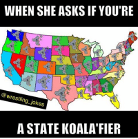 The things I do for you guys 😂😂😂 tag someone who would enjoy this: WHEN SHE ASKS IF YOU'RE  @wrestling jokes  A STATE KOALA FIER The things I do for you guys 😂😂😂 tag someone who would enjoy this