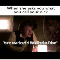 hol up: When she asks you what  you call your dick  You've never heard of the Millennium Falcon? hol up