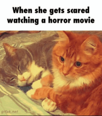 horror: When she gets scared  watching a horror movie  k net