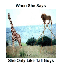 Memes, 🤖, and She: When She Says  She Only Like Tall Guys