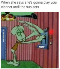 clarinet: When she says she's gonna play your  clarinet until the sun sets  NUT