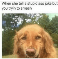 Ass, Funny, and Smashing: When she tell a stupid ass joke but  you tryin to smash 😂😂😂😂😂