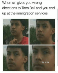 Memes, Siri, and Taco Bell: When siri gives you wrong  directions to Taco Bell and you end  up at the immigration services  ay wey orale güey