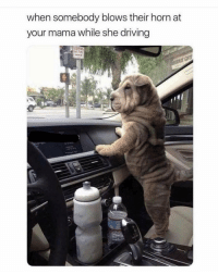Driving, Funny, and Hell: when somebody blows their horn at  your mama while she driving Oh hell nooooo 😡