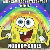 Care Meme: WHEN SOMEBODY HATES ON YOUR  MEMES
