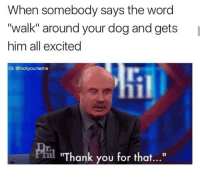 "Lol, Thank You, and Word: When somebody says the word  ""walk"" around your dog and gets  him all excited  IG: @fvckyoumeme  ""Thank you for that..."" Lol yesss (@fvckyoumeme)"