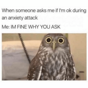 Dank, Anxiety, and Anxiety Attack: When someone asks me if I'm ok during  an anxiety attack  Me: IM FINE WHY YOU ASK Nothing is wrong.