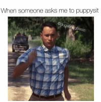 Memes, 🤖, and Asics: When someone asks me to puppysit  @dogsbeing asic ILL BE RIGHT THERE! @_theblessedone