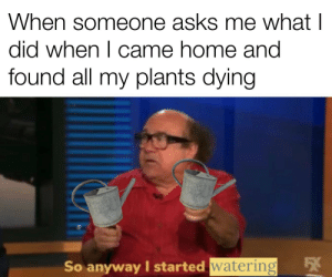 All I know: When someone asks me what I  did when I came home and  found all my plants dying  54  So anyway I started watering All I know