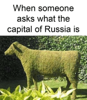 Dank, Memes, and Target: When someone  askS what the  capital of Russia is ba dum tss by ame42 MORE MEMES