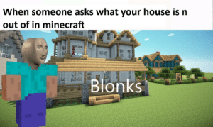 Stonk Business: When someone asks what your house is n  out of in minecraft  Blonks Stonk Business