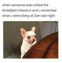 Funny, Teen Mom, and Girl Memes: when someone asks where the  shredded cheese is and u remember  what u were doing at 3am last night 😳 @gary_from_teen_mom