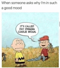 Charlie, Drinking, and Memes: When someone asks why I'm in such  a good mood  IT'S CALLED  DAY DRINKING  CHARLIE BROWN.  (ウ) 37 Delightful Memes To Help You In Trying Times #Cartoons #FunnyMemes #RandomMemes #Procrastination