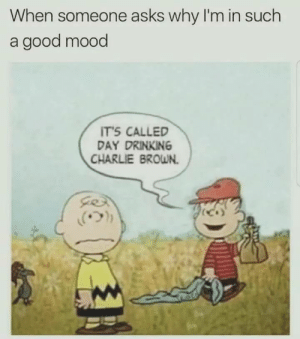 Meirl by malikj98 FOLLOW 4 MORE MEMES.: When someone asks why I'm in such  a good mood  IT'S CALLED  DAY DRINKING  CHARLIE BROWN Meirl by malikj98 FOLLOW 4 MORE MEMES.