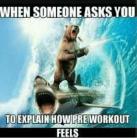 Pretty much on 3 scoops . check 👉@AESTHETICELITE 👌 for Motivation 💪😎 . 👉@AESTHETICELITE 💯 👉@AESTHETICELITE 💯 👉@AESTHETICELITE 💯: WHEN SOMEONE ASKS YOU  TO EXPLAIN HOW PRE WORKOUT  FEELS Pretty much on 3 scoops . check 👉@AESTHETICELITE 👌 for Motivation 💪😎 . 👉@AESTHETICELITE 💯 👉@AESTHETICELITE 💯 👉@AESTHETICELITE 💯