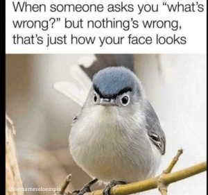 "Me_irl: When someone asks you ""what's  wrong?"" but nothing's wrong,  that's just how your face looks  u/vietnameseloempia Me_irl"