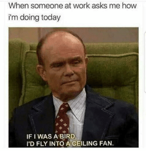 Dank, Work, and Today: When someone at work asks me how  i'm doing today  IF I WAS A BIRD  I'D FLY INTO A CEILING FAN.