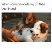 Best Friend, Latinos, and Memes: When someone calls my bff their  best friend Do not touch 😤 Follow Us➡️ @nochill_latinos
