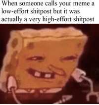 Meme, High, and Someone: When someone calls vour meme a  low-effort shitpost but it was  actually a very high-effort shitpost EXCUSE😤ME😤GOOD😤SIR