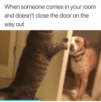 Definitely something I'd do 😂😂: When someone comes in your room  and doesn't close the door on the  way out Definitely something I'd do 😂😂