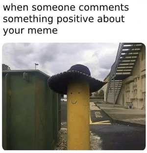 it brightens up your day: when someone comments  something positive about  your meme it brightens up your day