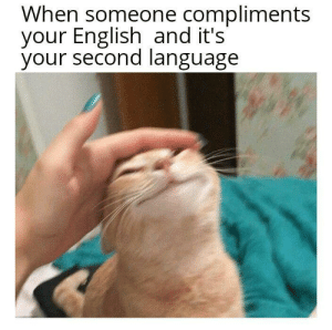 Hope you guys can relate to this: When someone compliments  your English and it's'  your second language Hope you guys can relate to this