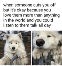 A Dream, Love, and Okay: when someone cuts you off  but it's okay because you  love them more than anything  in the world and you could  listen to them talk all day Its a dream
