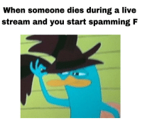 Live, Can, and Stream: When someone dies during a live  stream and you start spamming F what else can you do 😔🙏