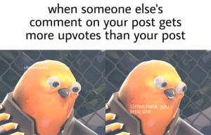 Why are you gay: when someone else's  comment on your post gets  more upvotes than your post  u/btuhanoncul  Listen here, you  little shit Why are you gay