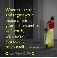 Memes, 🤖, and Elle: When someone  endangers your  peace of mind,  your self-respect or  self-worth  walk away  You owe it  to yourself  Elle Sommer  DSe <3 Live Purposefully Now  .