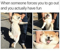Memes, Wow, and Http: When someone forces you to go out  and you actually have fun Wow, i have fun for once via /r/memes http://bit.ly/2Sx1aGD