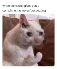 Who me?? via /r/wholesomememes https://ift.tt/2M72QDn: when someone gives you a  compliment u weren't expecting Who me?? via /r/wholesomememes https://ift.tt/2M72QDn