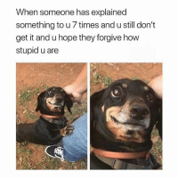 Girl Memes, Hope, and How: When someone has explained  something to u 7 times and u still don't  get it and u hope they forgive how  stupid u are hmmmmm