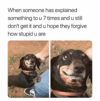 Memes, Hope, and 🤖: When someone has explained  something to u 7 times and u still  don't get it and u hope they forgive  how stupid u are 🤣Quick maths