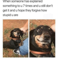 Memes, Patience, and Hope: When someone has explained  something to u 7 times and u still don't  get it and u hope they forgive how  stupid u are There's still hope for mepls have patience. via /r/memes https://ift.tt/2DvNB3Q