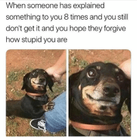Memes, Hope, and 🤖: When someone has explained  something to you 8 times and you still  don't get it and you hope they forgive  how stupid you are 😏 Follow @thesassbible @thesassbible @thesassbible @thesassbible
