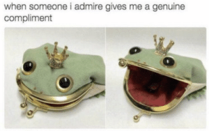 https://t.co/pekqRED8bU: when someone i admire gives me a genuine  compliment https://t.co/pekqRED8bU