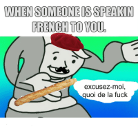 Dank, Meme, and Fuck: WHEN SOMEONE IS SPEAKIN  FRENCH TO YOU.  excusez-mOI  quoi de la fuck first post pls dont hate via /r/dank_meme https://ift.tt/2Lbek4u