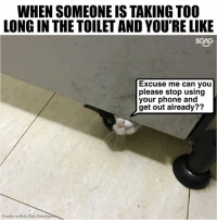 Memes, Phone, and 🤖: WHEN SOMEONE IS TAKING TOO  LONG IN THE TOILET AND YOU'RE LIKE  SGAG  Excuse me can you  please stop using  your phone and  get out already??  Credits to Bulu Bulu Kehidupan Purr-vert or purr-fect idea?