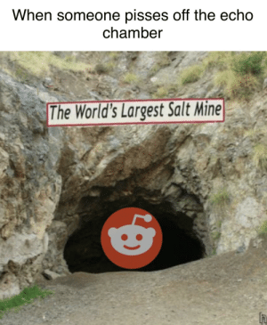 Memes, Tumblr, and Best: When someone pisses off the echo  chamber  The World's Largest Salt Mine More of the best memes at http://mountainmemes.tumblr.com