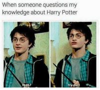 tag someone who loves harrypotter: When someone questions my  knowledge about Harry Potter  Yeah?  Try me. tag someone who loves harrypotter
