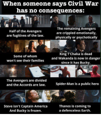 America, Family, and Frozen: when someone says Civil War  has no consequences:  The remaining Avengers  Half of the Avengers  are crippled emotionally,  are fugitives of the law.  physically or psychotically  King T Chaka is dead  Some of whom  and Wakanda is now in danger  won't see their families  since it has Bucky  The Avengers are divided  Spider-Man is a public hero  and the Accords are law.  Steve isn't Captain America  Thanos is coming to  a defenceless Earth.  And Bucky is frozen. ~ DC marvel universe