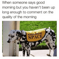 Funny, Good Morning, and Good: When someone says good  morning but you haven't been up  long enough to comment on the  quality of the morning  PLEASEGIVE ME  SPACE It's safe to just say 'morning at this point😒😅 via @cabbagecatmemes