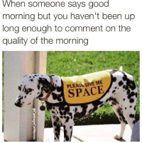 Funny, Good Morning, and Coffee: When someone says good  morning but you haven't been up  long enough to comment on the  quality of the morning  PLEASE GIVE ME  SPACE Touch base with me after I've had 17 cups of coffee😅 via @cabbagecatmemes