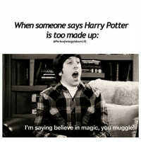 Harry Potter, Memes, and Magic: When someone says Harry Potter  is too made up:  @PerksofamugglebornIIG  I'm saying believe in magic, you muggle Q- anyone else here that likes the big bang theory? Tag a friend! harrypotter potterhead